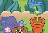 Dora Magická záhrada